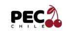 PEC Chile Consultora frutícola industria del Cerezo